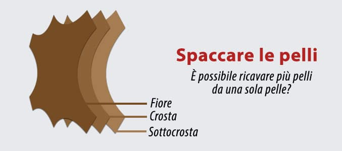 spaccapelli spaccare pelli a umido conceria
