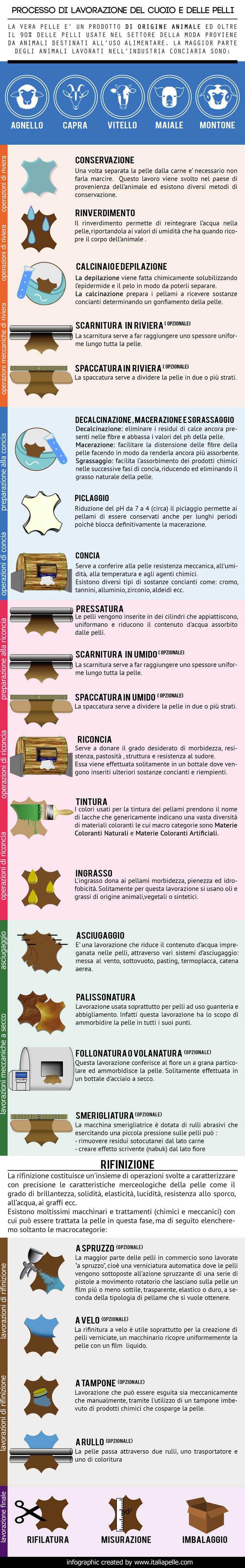 processo concia - lavorazione pelli cuoio  infografica